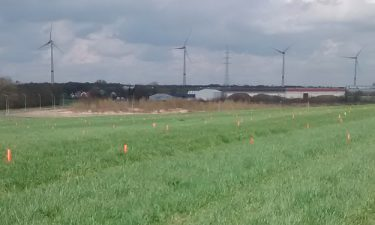 Uitzetten grootste zonnepanelenpark van Wallonië