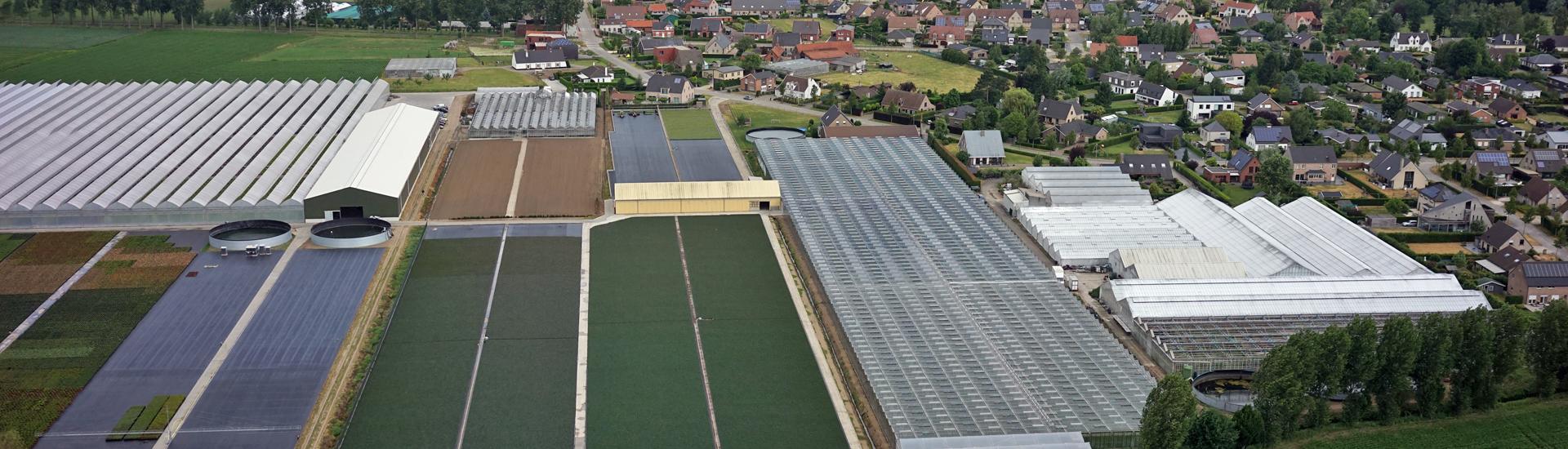 Dronefotografie van bloemenkwekerij